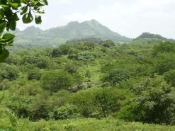 Abastament i distribució d'aigua potable a la Comunitat de El Charco (Sta. Rosa del Peñón). Nicaragua